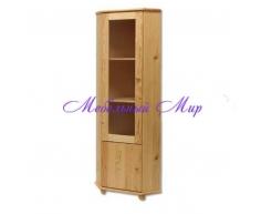 Одностворчатый угловой шкаф Витязь 98