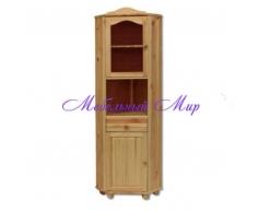 Одностворчатый угловой шкаф Витязь 99