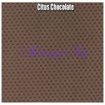 Citus Chocolate